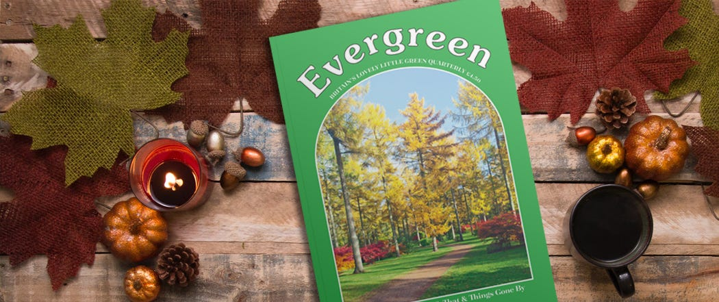Evergreen Magazine Autumn Issue