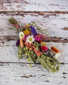 Bunch of Dried Flowers in Bright Colours