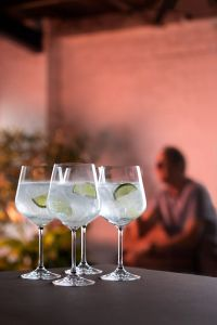 Cheers Copa Gin & Tonic 4 Pack