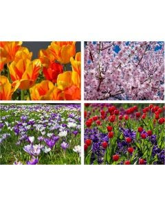The Flowers in Spring Jigsaw