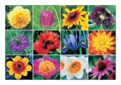 Blooming Gorgeous Jigsaw Puzzle
