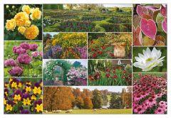 Colour around the Garden Jigsaw Puzzle