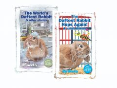 The Daftest Rabbit Collection